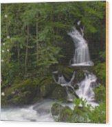 Mouse Creek Falls Wood Print