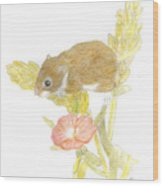 Mouse On The Corn Wood Print
