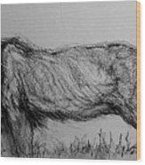 Moving Lion 1 Wood Print
