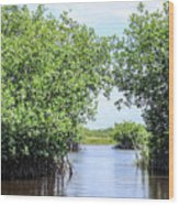 Moving The Glades Of Roatan Wood Print
