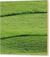 Mowing Hay  Wood Print by Thomas R Fletcher