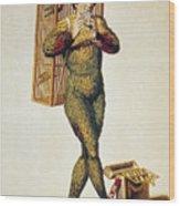 Mozart: Magic Flute, 1791 Wood Print