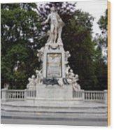 Mozart Vienna Austria Wood Print