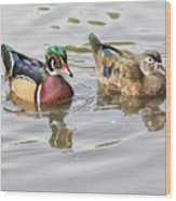 Mr. And Mrs. Wood Duck Wood Print