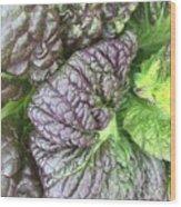 Mr. Cabbage's Little Secret Wood Print