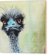 Mr. Grumpy Wood Print