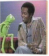 Mr Lou Rawls - Kermit The Frog Wood Print