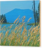 Mt. Bachelor  Wood Print