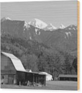 Mt. Baker Wine Country Wood Print