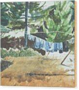 Mt. Barnabe Wash Wood Print