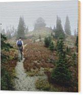 Mt Brown Lookout - Glacier National Park Wood Print