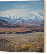 Mt Denali View From Eielson Visitor Center Wood Print