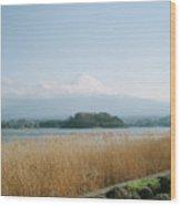 Mount Fuji View Wood Print