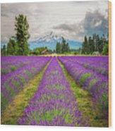 Mt. Hood And Lavender Wood Print
