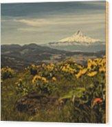 Mt. Hood And Wildflowers Wood Print