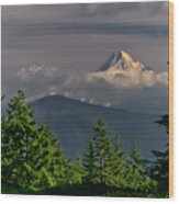Mt Hood From Grassy Knoll Wood Print