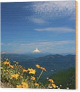 Mt. Hood In The Distance Wood Print