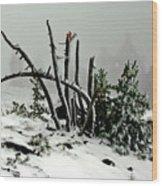 Mt Hood Snow Wood Print