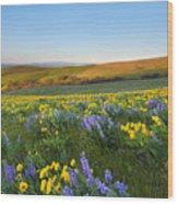 Mt. Hood Wildflower Morning Wood Print