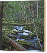 Mt Hood Wilds Wood Print