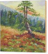 Mt. Jumbo Tree Ak Wood Print