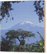 Mt. Kilimanjaro,moshi,tanzania Wood Print