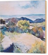 Mt Lemmon View Wood Print
