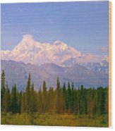 Mt Mckinley 125 Miles Away Wood Print