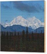 Denali  Wood Print