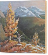 Mt. Rainier 5 Wood Print