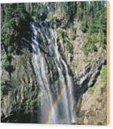 Mt. Rainier National Park Wood Print