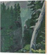Mt Ranier Wood Print