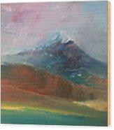 Mt Shasta 10 Wood Print