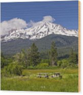Mt Shasta With Picnic Tables Wood Print