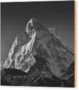 Mt Shivling Above Tapovan Wood Print