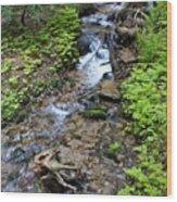 Mt. Spokane Creek 2 Wood Print