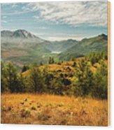 Mt St Helens I Wood Print by Brian Harig