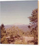 Mt Taylor  Wood Print