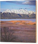 Mt. Timpanogos And Utah Lake Wood Print