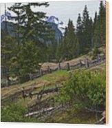 Mt. Trails Wood Print