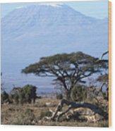 Mt.kilimanjaro Wood Print