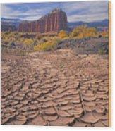 212648-mud Cracks Upper Cathedral Valley  Wood Print