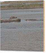 Mud Flat Waterways Wood Print