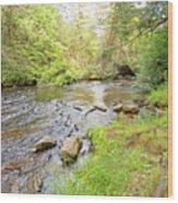 Mud Run, Pennsylvania, Pocono Mountain Stream Wood Print