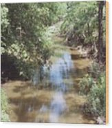Muddy Hickory Creek  Wood Print