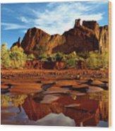 Muddy Reflection Wood Print