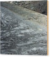 Mudflats Frozen Wood Print