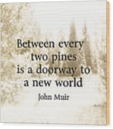 Muir Quote On Sepia  Wood Print