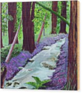 Muir Woods - Psalm 1 Verse 3 Wood Print