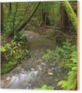 Muir Woods Stream Wood Print